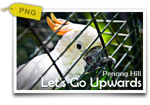 Let's Go Upwards To Penang Hill-Experience The Mellow Side Of Penang