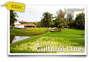 Langkawi Cultural Lures-Delve Into the Cultural and Historical Riches of Langkawi Island