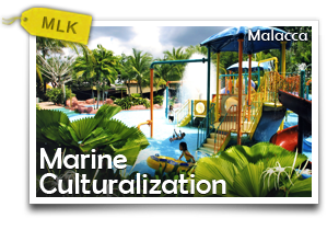 Malacca Marine Culturalization-Experience The Richness Of Ocean Culture In Malacca