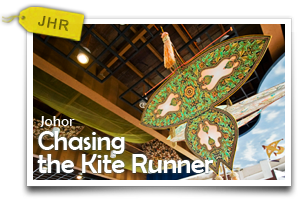 Chasing the Kite Runner-Discovering Gorgeous Beaches, Amazing Birds and Glorious Kites!