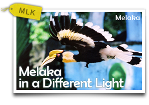 Melaka in a Different Light-The Nature and Modernist Art of Historical City