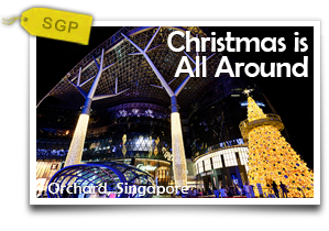 Christmas is All Around-The Ultimate Singaporean Christmas and Shopping Experience!